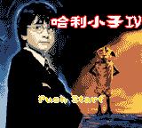 2003哈利小子IV中文版