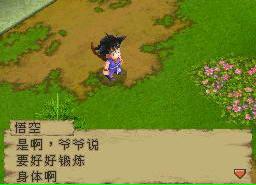 龙珠DS中文HACK修改版